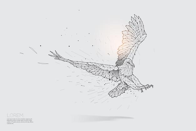 La linea delle particelle e il punto dell'aquila che vola