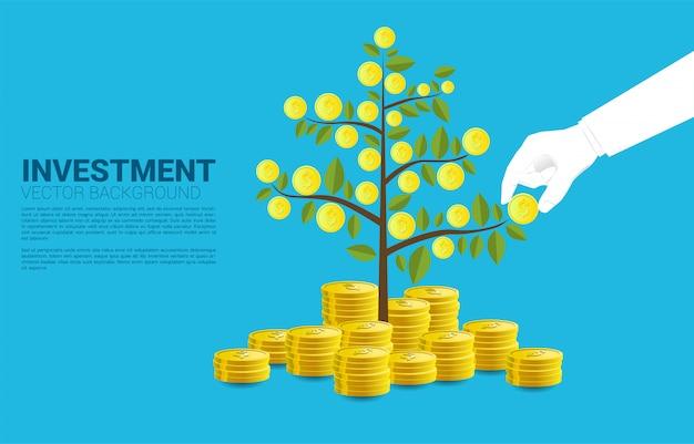 La mano dell'uomo d'affari prende la moneta dal modello crescente del fondo dell'albero dei soldi