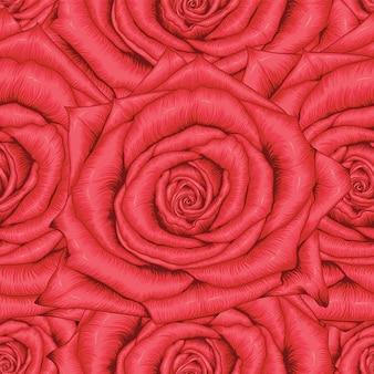La rosa rossa senza cuciture del modello fiorisce il fondo astratto