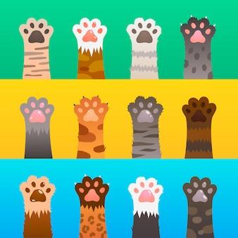 La zampa di gatto è piatta. zampe di gatto artiglio mano, simpatico cartone animato animale, pelliccia divertente cacciatore selvaggio. concetto di amicizia del gattino