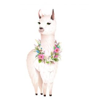 Lama animal design con fiori laurel