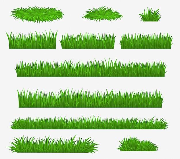Lame di erba di campo verde, media e fattoria