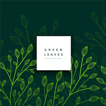 Lascia la carta verde fogliame