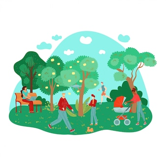 Lavoro all'aperto della gente del parco di estate della città, camminante facendo sport, alberi, banchi sull'illustrazione della composizione nell'erba.