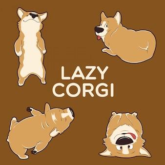 Lazy corgi