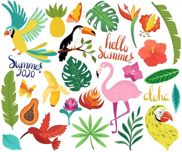 Le icone dell'estate con gli uccelli tropicali e i fiori esotici vector l'illustrazione