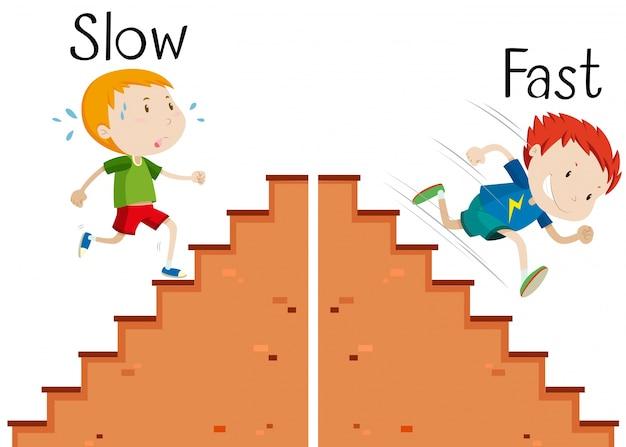 Le parole opposte sono lente e veloce