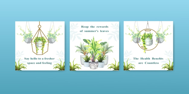 Le piante della pianta e della casa dell'estate pubblicizzano la progettazione del modello per l'illustrazione dell'acquerello dell'opuscolo, del brocure e del libretto