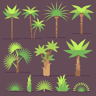 Le piante e le palme esotiche tropicali vector le icone piane. insieme di alberi con foglie verdi, illustratio
