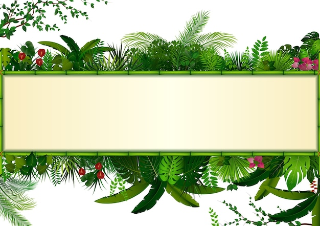 Le piante rettangolari incorniciano il bambù fogliame tropicale