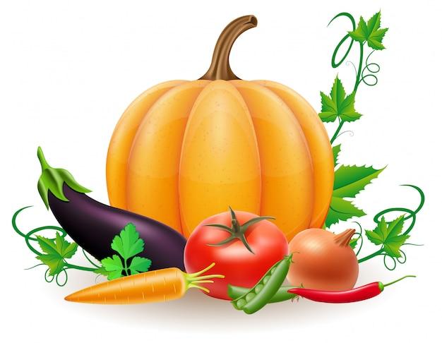 Le verdure della raccolta di autunno e della zucca vector l'illustrazione