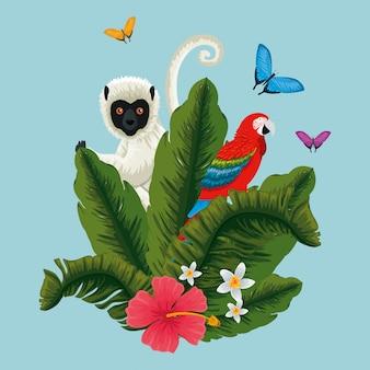 Lemure con pappagallo e farfalle con fiori esotici