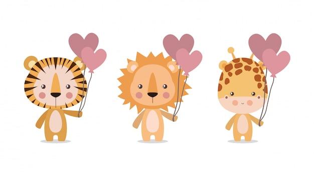 Leone e giraffa svegli della tigre