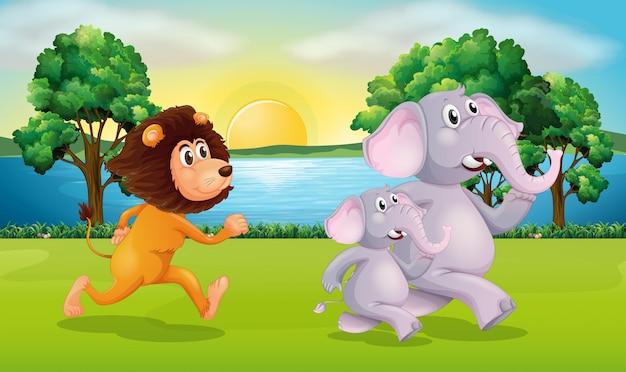 Leone ed elefanti che corrono nel parco