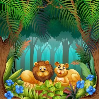 Leone nella giungla