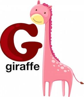 Lettera dell'alfabeto animale - g