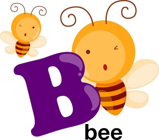 Lettera di alfabeto animale - b