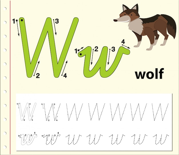 Lettera w che traccia i fogli di lavoro dell'alfabeto