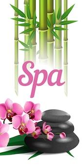Lettering spa, bambù, pietre e orchidea. manifesto pubblicitario del salone della stazione termale