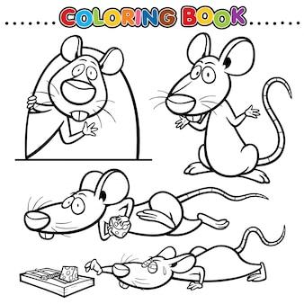 Libro da colorare di cartoni animati - ratto