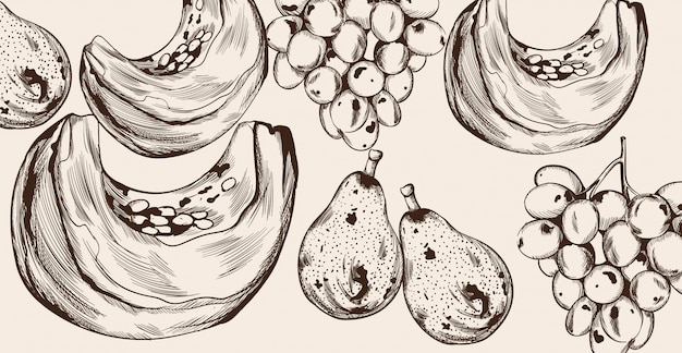 Linea arte della fetta di zucca e del modello di frutti. decori del raccolto autunnale