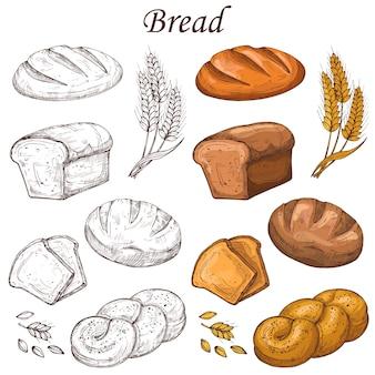 Linea e elementi colorati da forno. pagnotta di pane isolata su bianco