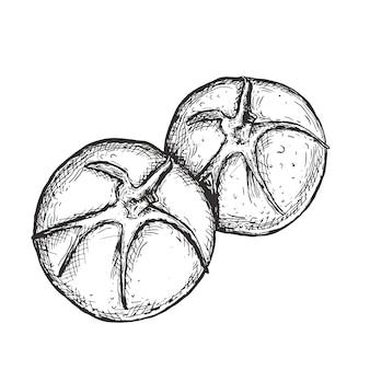 Linea illustrazione disegnata a mano di arte del pomodoro, arte di vettore