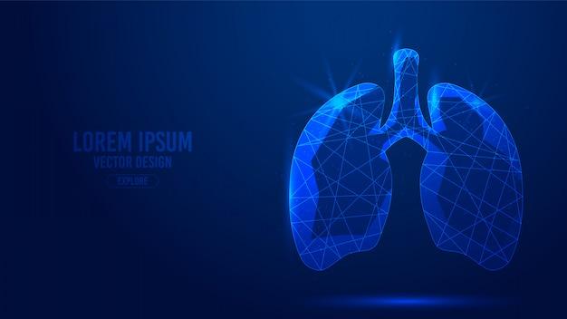 Linee geometriche umane dell'organo interno dei polmoni, wireframe in stile triangoli bassi poligonali