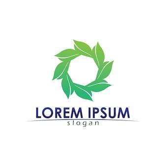 Logo amichevole di concetto di eco di progettazione di vettore della foglia dell'albero