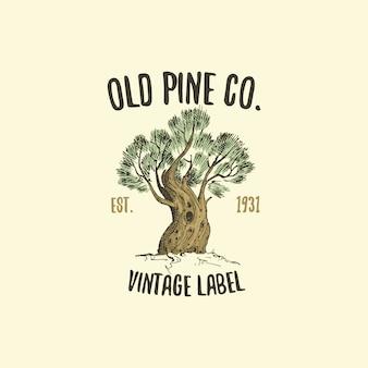 Logo dell'albero di pino inciso o disegnato a mano, emblema dall'aspetto antico per ecologia, campeggio o branding alimentare