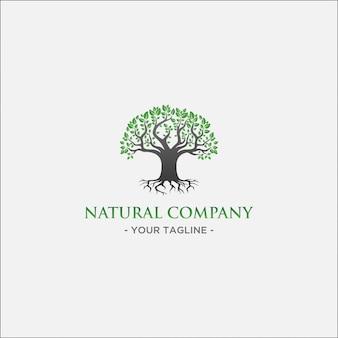 Logo dell'albero verde con foglia verde e ramo nero