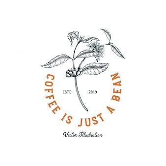 Logo della caffetteria, albero del caffè con fiori e fagioli per logo design