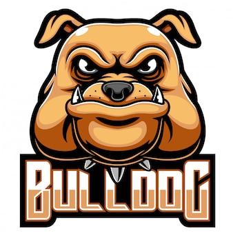 Logo della mascotte testa bulldog