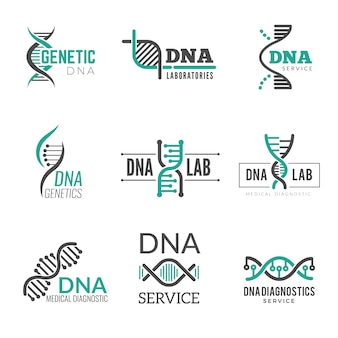 Logo dna. simboli di scienza genetica elica biotech identità aziendale vettoriale