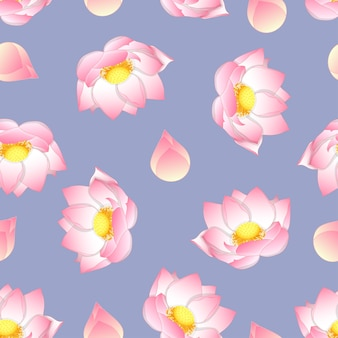 Loto indiano rosa su sfondo viola