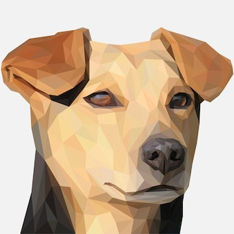 Lowpoly di brown dog head