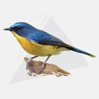 Lowpoly vector of tropical bird