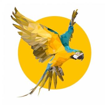 Macaw sulla polizia bassa