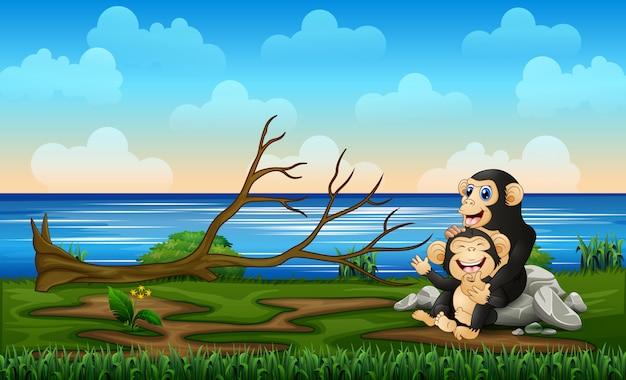 Madre allegra dello scimpanzè con il suo bambino in natura