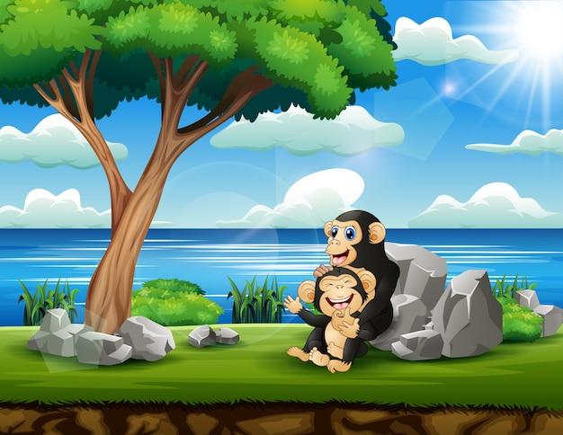 Madre felice dello scimpanzè con il suo bambino nel parco