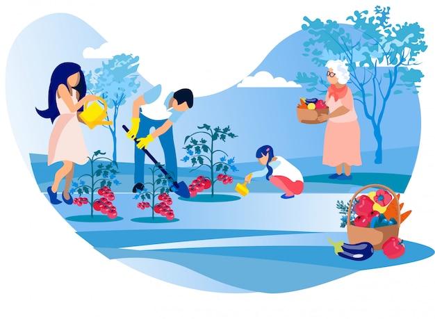 Madre, padre, piccola figlia, cura dei pomodori,