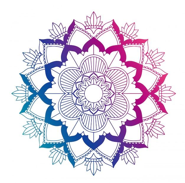 Mandala design isolato
