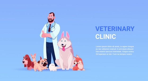 Manifesto della clinica veterinaria con il veterinario maschio dottore e gruppo di cani felici sopra lo spazio della copia