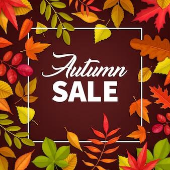 Manifesto di vendita autunnale, offerta di foglie cadute