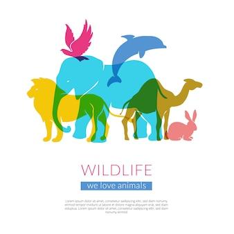 Manifesto variopinto piano della composizione nelle siluette degli animali e degli uccelli della fauna selvatica con l'illustrazione di vettore del leone dell'aquila e del cammello dell'elefante