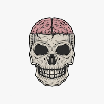 Mano che disegna l'illustrazione d'annata di vettore del cervello del cranio