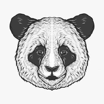 Mano che disegna l'illustrazione d'annata di vettore della testa del panda