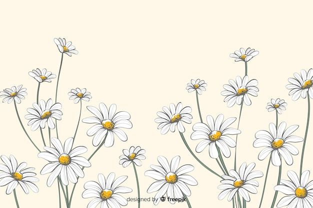 Margherite sfondo decorativo stile acquerello