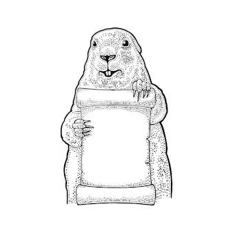 Marmotta con poster. illustrazione nera vintage incisione.