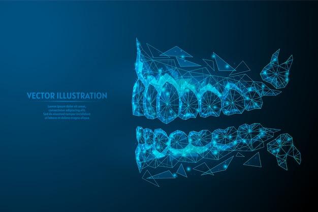 Mascella sana dell'uomo, vista del primo piano della bocca dal lato. morso corretto, occlusione, molare. concetto di odontoiatria, ortodonzia, dentista, dente del giudizio. 3d poli illustrazione wireframe bassa.